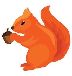 Squirrel acorn vector