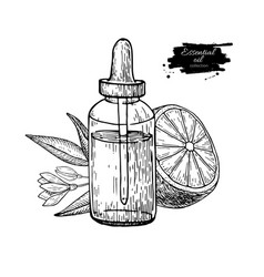 Lemon essential oil bottle and lemon fruit hand vector