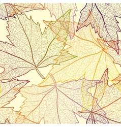 Autumn transparent maple leaves pattern background vector
