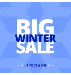Big winter sale banner vector