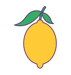 Fresh citrus fruits whole and leaves lemon vector