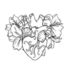 heart with white lilies in romantic style vector image vector image