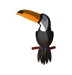 toucan exotic bird icon vector image