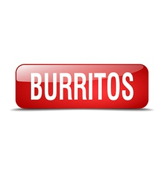 Burritos red square 3d realistic isolated web vector