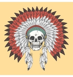 American indian skull in feather headdress vector