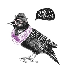 dressed up starling vector image