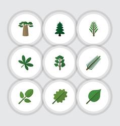 Flat icon natural set of linden alder baobab and vector