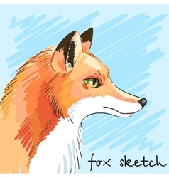 Portrait of predatory fox hand-drawn individual vector