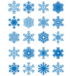 set of different snowflakes vector image vector image