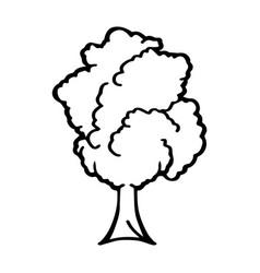 thin line tree icon vector image vector image