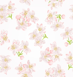 Seamless texture branch of apple tree with flowers vector image vector image