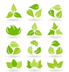 Eco leaf icons vector