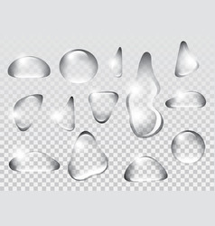 Clear transparent water drops isolated on the vector