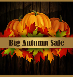 Autumn special sale poster on wood background vector