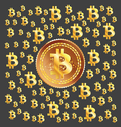 bitcoin golden pattern vector image