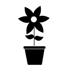cute flower garden with pot isolated icon vector image