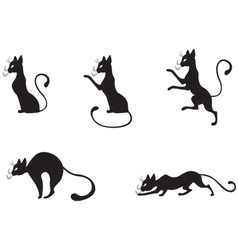 silhouettes of black cats vector image vector image