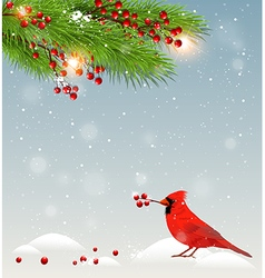 Winter landscape with cardinal bird vector image