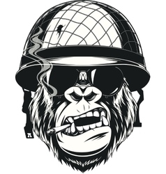 Monkey soldier with a cigarette vector image