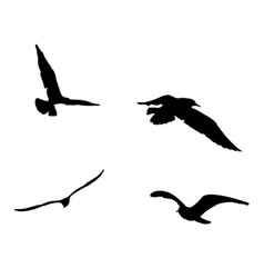 Set - seagull silhouette on white vector