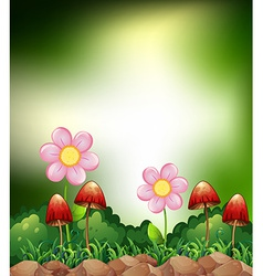 Mushroom and flowers vector