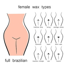 Female wax types vector