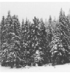 Pine forest in winter landscape nature vintage vector