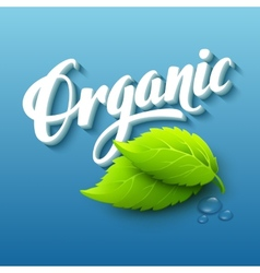 Realistic organic logo vector