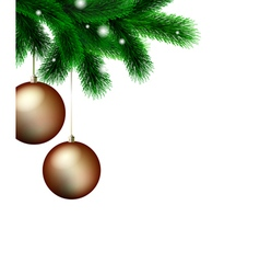 branch christmas tree vector image vector image