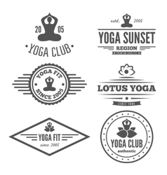 Set of vintage logo badge emblem or logotype vector