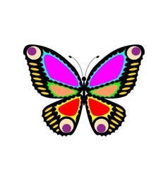 Easily editable butterfly vector