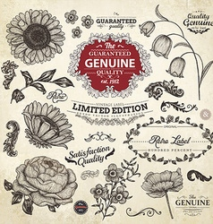 Vintage flowers and labels set vector