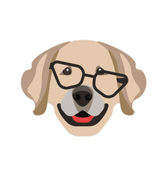 labrador retriever dog in black glasses isolated vector image