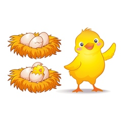 Egg and little chicken vector