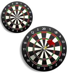 Darts set vector image vector image