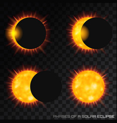 Phases of the total solar eclipse on vector