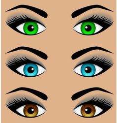 Set the eyes of different colors vector image vector image