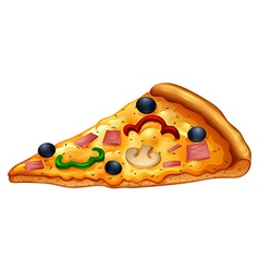 Slice of pizza on white vector image