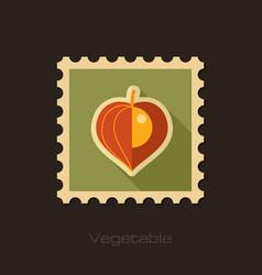 physalis berries flat stamp vegetable vector image