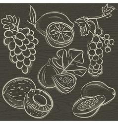 Set of fruits lemon grapes fig papaya coconut curr vector