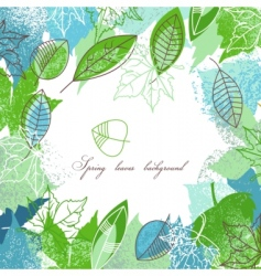 Spring leaves frame vector
