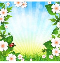 Spring or summer background with grass leaves and vector