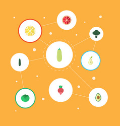 Flat icons cauliflower salad cabbage and other vector