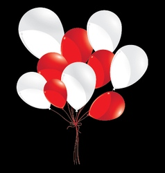 Red and white balloons isolated on black vector image vector image