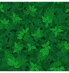 Green branches of trees vector image