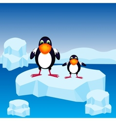Penguins on block of ice vector image