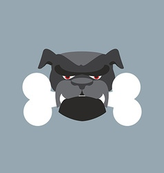 Scary dog head angry bulldog and bone pet head vector
