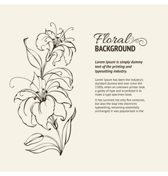 Blooming lilies vector