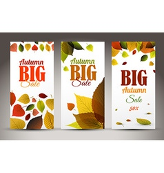Fresh natural fall vertical banners with leafs and vector image