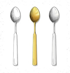 Set realistic sketch spoons Cutlery for design vector image
